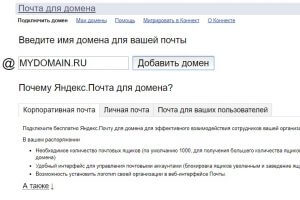 вбиваем наш домен в Яндекс DNS