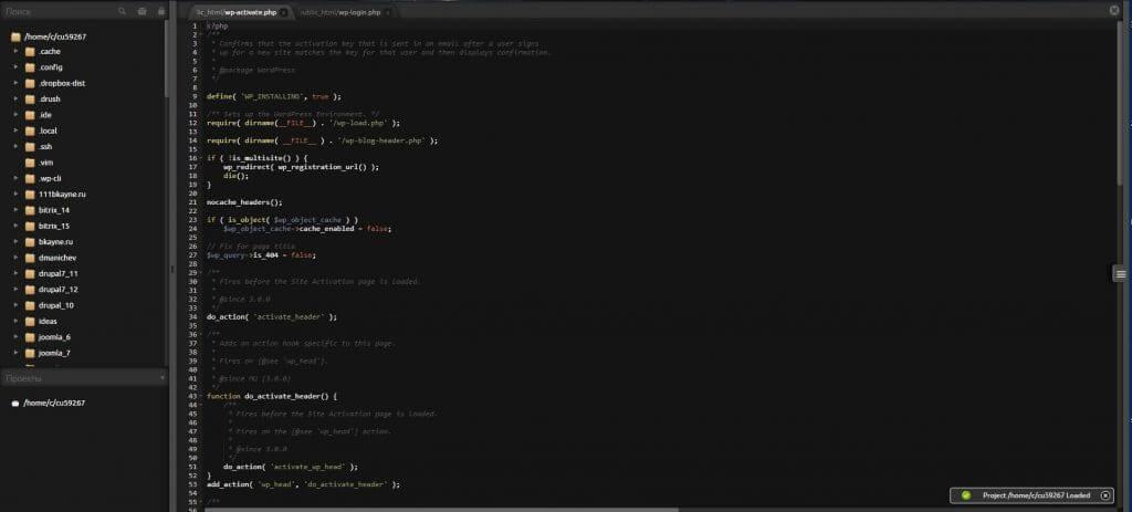 Удобная IDE в Панели Timeweb / Веб-консоль SSH
